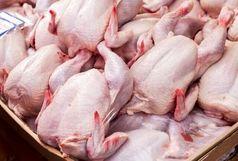 برخورد قضایی با اخلال گران عرضه مرغ در ایلام