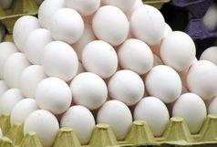3 تن تخم مرغ فاسد در آستارا کشف شد