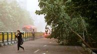 وزش باد شدید در برخی استانهای کشور