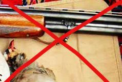 تمدید ممنوعیت شکار در  دو تالاب