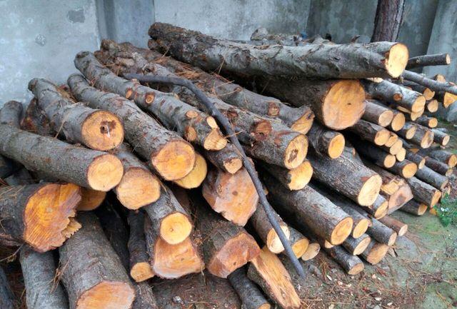 کشف چوب قاچاق  در گچساران