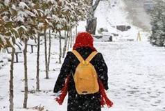 اعلام تعطیلی و شروع با تاخیر فعالیت مدارس ابتدایی و پیش دبستانی در برخی از مناطق و شهرستانهای استان