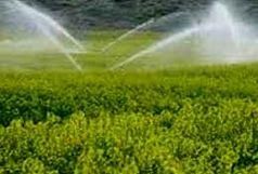 اجرای سامانه های نوین آبیاری در ۷۵۰ هکتار از اراضی کشاورزی چالدران