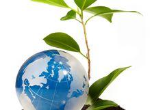 ۱۶ پروژه منابع طبیعی و آبخیزداری به ارزش ۸۰ میلیارد ریال در هفته دولت افتتاح خواهد شد