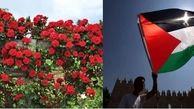 گل های سرخ اروپایی در غزه