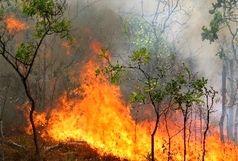 حریق 20هکتار از جنگل ها و مراتع هرمزگان