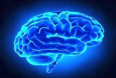 چگونه ماده سفید مغز میتواند در درمان افسردگی موثر باشد؟