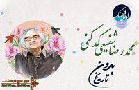 گرامیداشت محمدرضا شفیعی کدکنی، در « بدون تاریخ»
