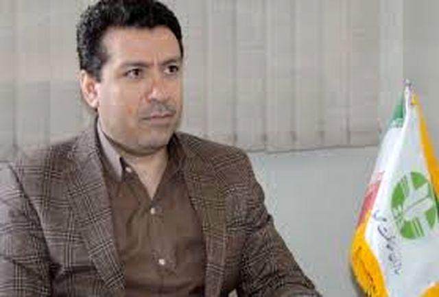 209 شکارچی متخلف طی سال گذشته در زنجان دستگیر شدند