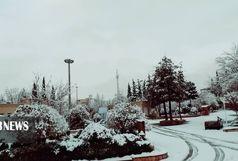 بارش برف مدارس ایلام را به تعطیلی کشاند
