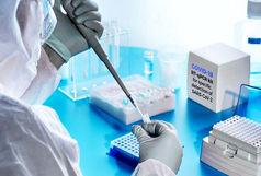 شناسایی یک داروی جدید با قابلیت درمان کرونا