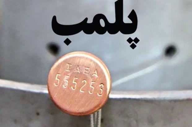 پلمپ 1013 واحد صنفی متخلف در کرمان