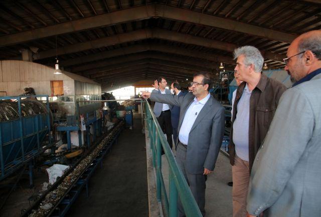 آموزش و فرهنگ سازی در حوزه تفکیک و کاهش تولید زباله باید به خانواده های تهرانی ضروری است
