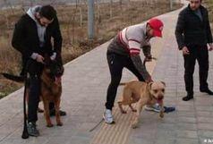 آخرین وضعیت پرونده حمله سگ به یک خانواده در لواسان