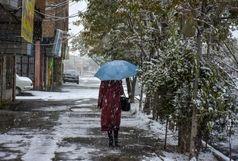 شروع مجدد بارش برف در تهران از عصر فردا