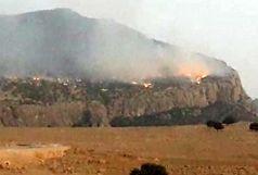 ۸۰ درصد از آتش سوزیِ منابع طبیعی و مراتع کوه نیرِ در لوداب مهار شد