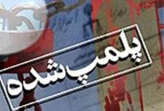 پلمب مراکز نگهداری و عرضه غیرقانونی دام در همدان